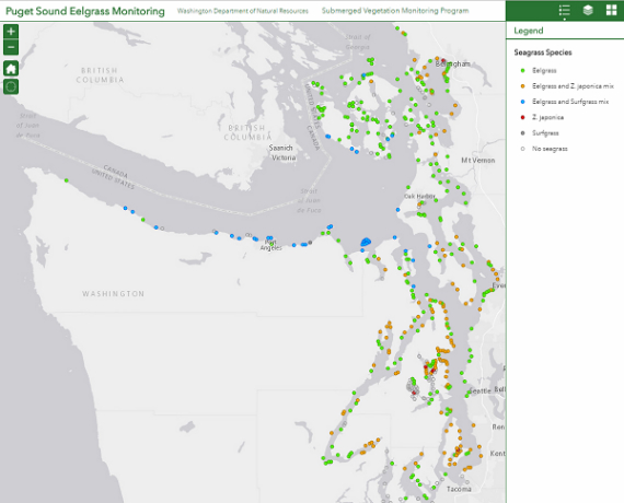 Puget Sound Eelgrass Monitoring Data Viewer Wa Dnr - Puget-sound-on-us-map