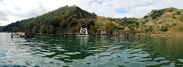 Derelict pilings will be removed from King County's Maury Island Natural Area in September 2016.