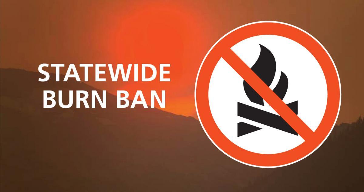 Statewide burn ban